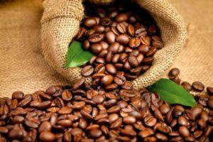 Сорта кофе: краткий обзор